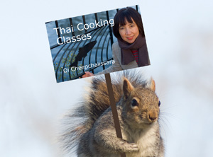 Squirrel with placard