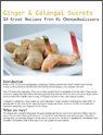 Ginger and Galangal Secrets